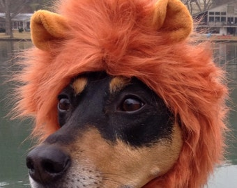 Dog Lion Mane for dogs and cats