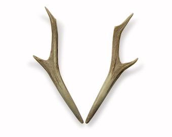 Two Hair Sticks Roe Deer Natural Antlers Forest Native Deer Antler Hairpin Hair Viking Tribal Natural Hair Accessories Handmade MariyaArts