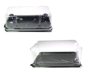 50/100 Clear Lid with Black Base Box Size Pastry Bakery Containers