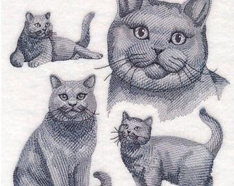 Custom Embroidered British Shorthair Cat Sweatshirt S-3XL