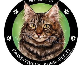 Maine Coon Brown Tabby Cat My Best Friend Dog Magnet