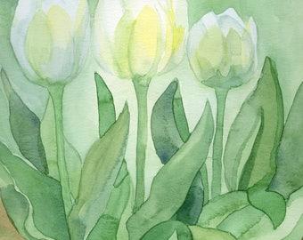 White Tulip Print from Original Watercolor