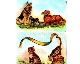 Set of 2 postcards with cats, dogs envelope. Collage and pastel.