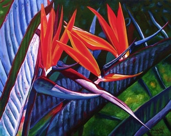 Bird of Paradise, 8x10 art prints,  Kauai Hawaii, kauaiartist, tropical flowers, hawaiian flower, hawaii art, floral, maui oahu honolulu