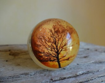 Harvest Moon Snow Globe Ring - Handmade in the USA - Autumn Moon - Woodland -Full Moon - Moon Ring - Moon - NASA - Photo Ring