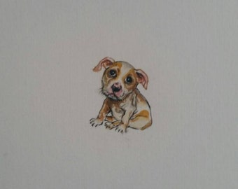 """Bulldog puppy miniature painting, Original handmade watercolour painting, Not a print, dog size is 3 x 2.8 cm (1.2 x 1.1"""") on A5 paper"""