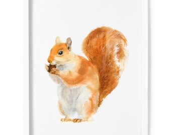 Red Squirrel Print of Watercolor Painting, Animal Giclee Print
