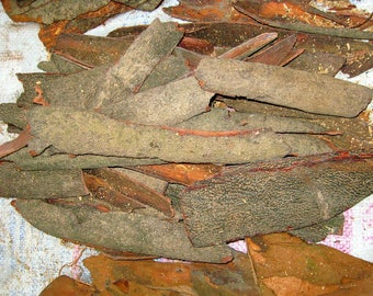 Bobinsana Tincture Herbal Extract 4 Sizes