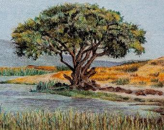 Africa Painting, Landscape Art, Original Art Africa, Pastel Painting, Ngorongoro, Africa Art, African Scenes, Pastel Landscapes, Tanzania
