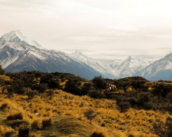 layers of new zealand