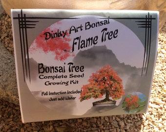 Bonsai Seed Growing Kit Flame Tree