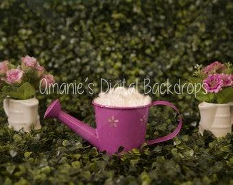 Pink Watering Can Newborn Digital Backdrop