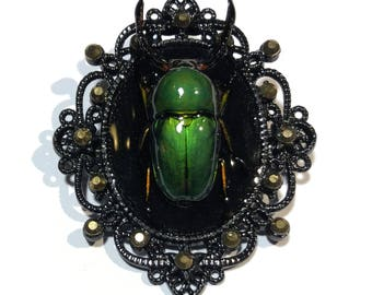 Spectacular One-of-a-Kind Large Green Horned Beetle on Black Gothic Pin