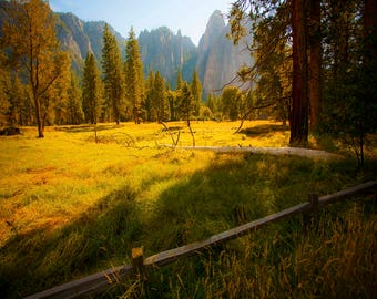 Yosemite Meadow giclee print,  yosemite valley forest meadow blue sky, national park images