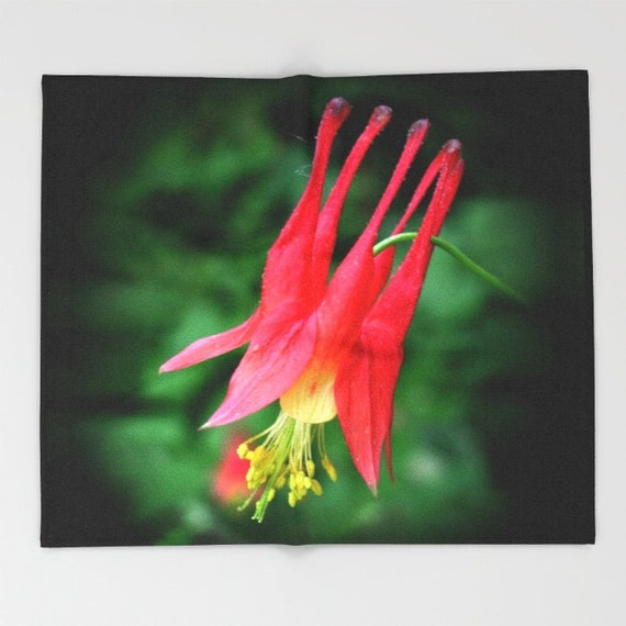Columbine Floral And Gifts: Wild Columbine Flower Throw Blanket Mother's Day Gift