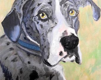Custom Pet Portrait Painting, Fine Art Oils on Canvas Dog Portrait Animal Art