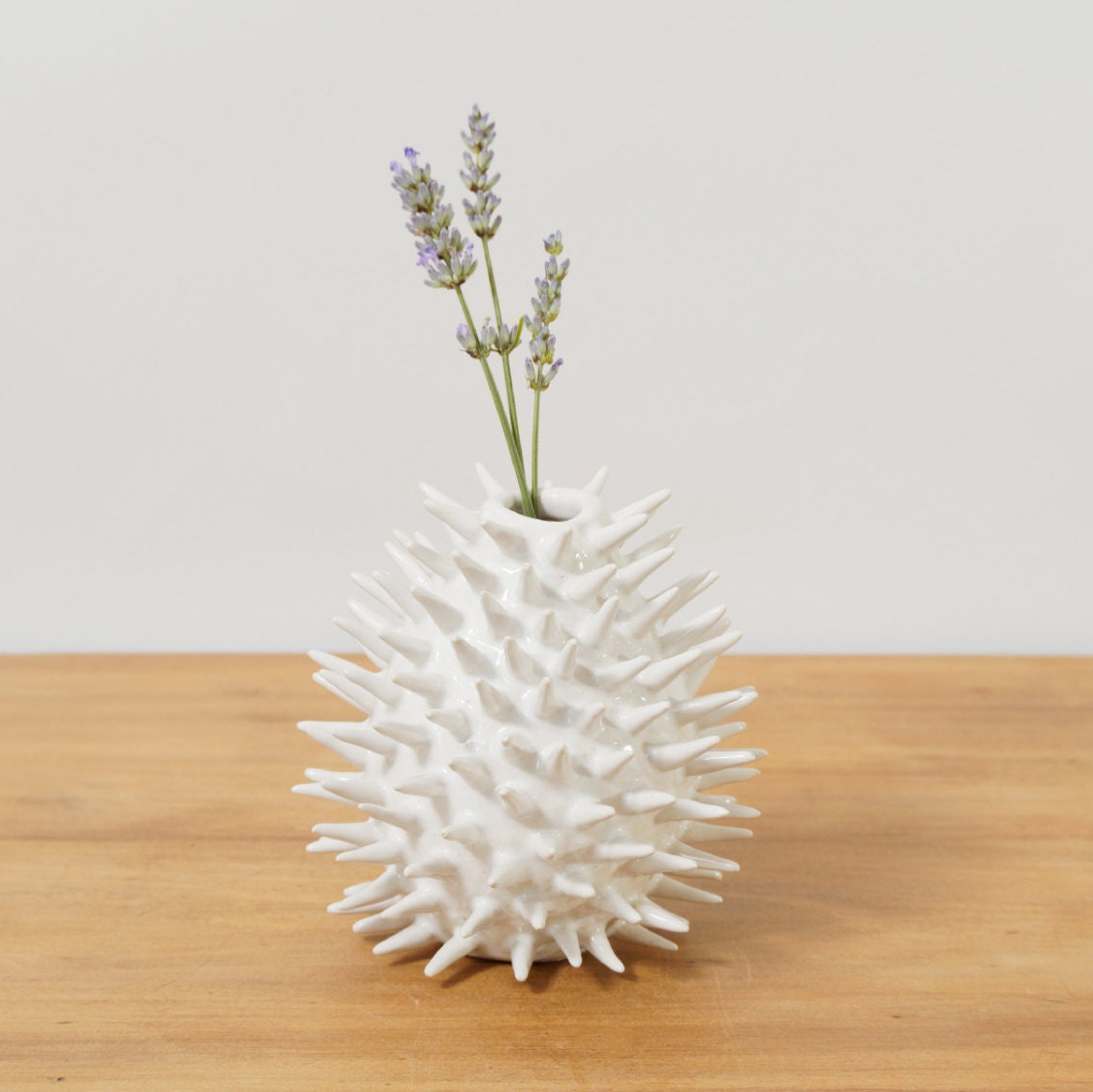 Modern spiky ceramic vase sculptural white spike flower vase zoom reviewsmspy