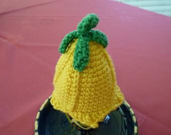 Egg hat, warmer, egg, flower crochet cotton
