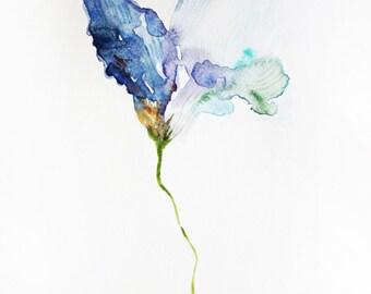 Print of Watercolor, Iris Flower art, Painting Flowers, flowers print, botany watercolor, wall art, flowers watercolor, Print Art OOAK