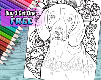 Beagle - Adult Coloring Book Page - Printable Instant Download