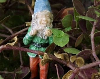 Gnome Ronnie: miniature garden, fairy garden, fairy garden accessories, fairy, miniature