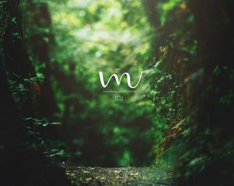 Beautiful Green- Forest Digital Background