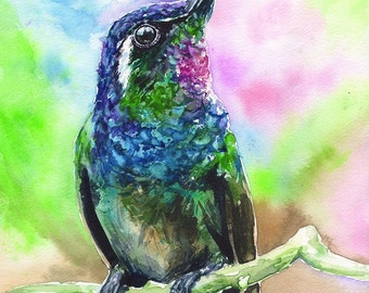 Hummingbird watercolor Print of the Original painting Cute  Art Ruby-throated  home decor Bird hummer  songbird wildliife