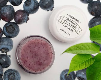 Blueberry Resveratrol Lip Mask (.40 oz Jar) - Blueberry Fruit, Resveratrol, Grapeseed Oil, No Artificial Ingredients - Anti Aging Lip Repair