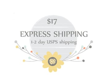 Overnight Express mail add-on to any US purchase