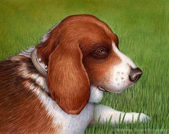 CUSTOM Watercolor Painting, Watercolor Original, Custom Pet Portrait, Original Made-to-Order Watercolor Painting (1 Animal), Dog, Cat, Bird