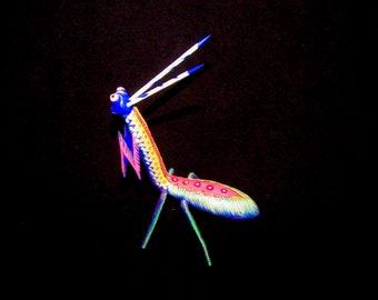 Playful Praying Mantis