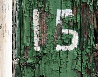 15 Green Peeling Paint Photograph