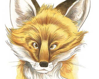 Woodland Fox Portrait