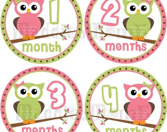 Monthly Baby Girl Stickers, Milestone Stickers, Baby Month Stickers, Monthly Bodysuit Sticker, Monthly Stickers Owls (Olivia)