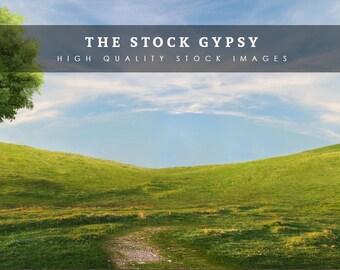 Blue sky, grassy hills fantasy background