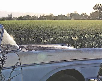 Art Print: RANCHERO III, rural art, vintage ford, farm art, country art, vintage car art, ford ranchero, country drawing, old farm truck