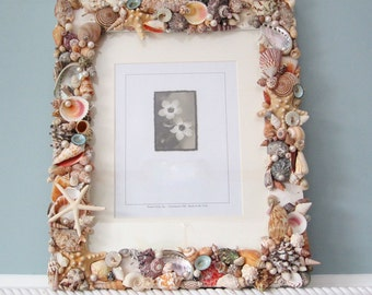 "Shell Picture Frame, Seashell Frame, Nautical Beach Decor Shell Wall Frame, Seashell Wall Frame - 10x13"" COLORS OR WHITE"