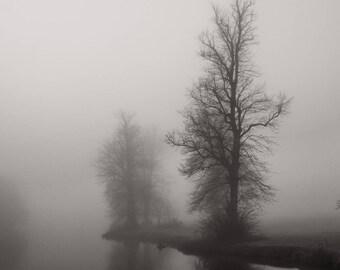 Landscape Photograph, Monochrome, Berkshire, Misty Trees II