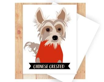 Chinese Crested, Dog Birthday Card, Dog Note Card, Congratulations Card, Thank You Card, Dog Art, Dog Breeds, Dog Sweater, Small Dog Art