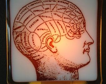 Phrenology Head Anatomy Glass Night Light