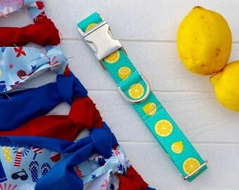 Lemons dog collar, teal dog collar, girl dog collar, boy dog collar, summer dog collar, girl dog collars, boy dog collars, dog accessories