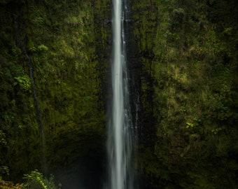 Akaka Falls, Hawaii 2