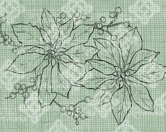 Digital Download Poinsettia Color Book Style Colorbook digi stamp, digis, digital stamp, Christmas Flowers, Antique Illustration Transfer