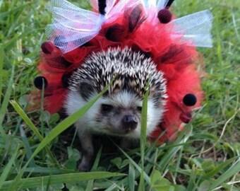 Pet Costume- Lady Bug Tutu, Hedgehogs, Guinea Pigs, etc.