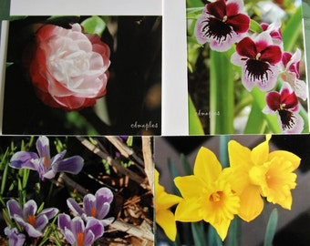 Folded Blank Note Cards, Set of 4 Assorted,  Flower Photo Cards, Camellia Card, Orchid Photo Card, Crocus Photo Card, Flower Greeting Cards