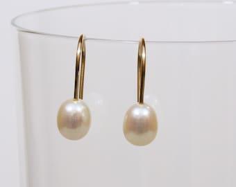 Freshwater Pearl, Gold Fill Earrings