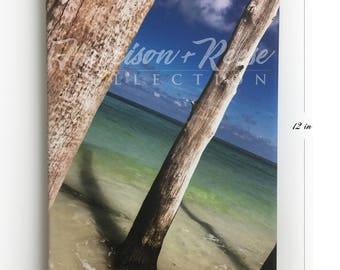 Beautiful Paradise Ocean Shore Canvas Print 8 x 12