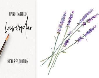 INSTANT DOWNLOAD Digital Lavender Watercolor art |  .png with transparent edges | 8x10 art print | Pantone color of the year