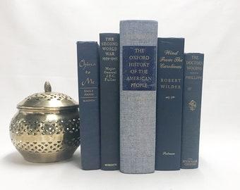 Blue Decorative Books for Shelf Decor
