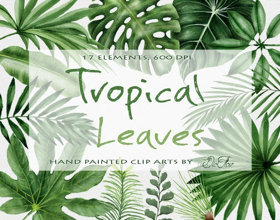 Watercolor Tropical Leaves Clipart Palm Leaf Greenery Clip Art
